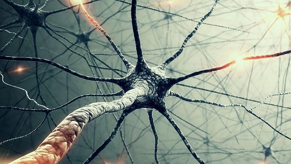 psychodermatology-psixodermatologia-psuxologos-neurologia